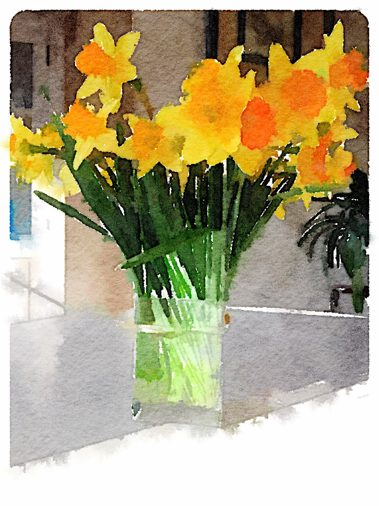 Jonquilles in Waterlogue